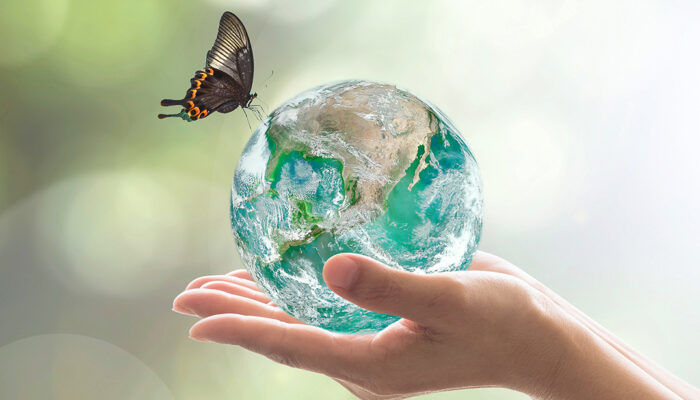 Globe and butterfly