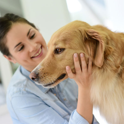 Personal Concierge for Pet Care
